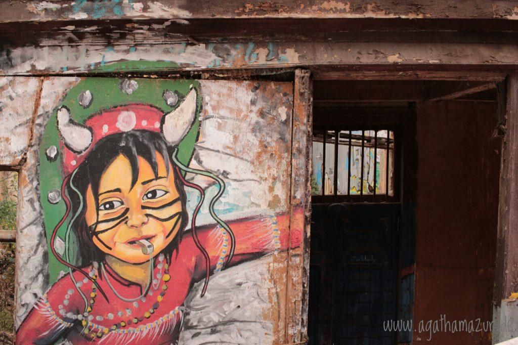 In Valparaiso, der Nachbarstadt Santiagos, entdeckt man an jeder Ecke Graffiti. Von politisch bis künstlerisch bis bunt ist alles dabei.