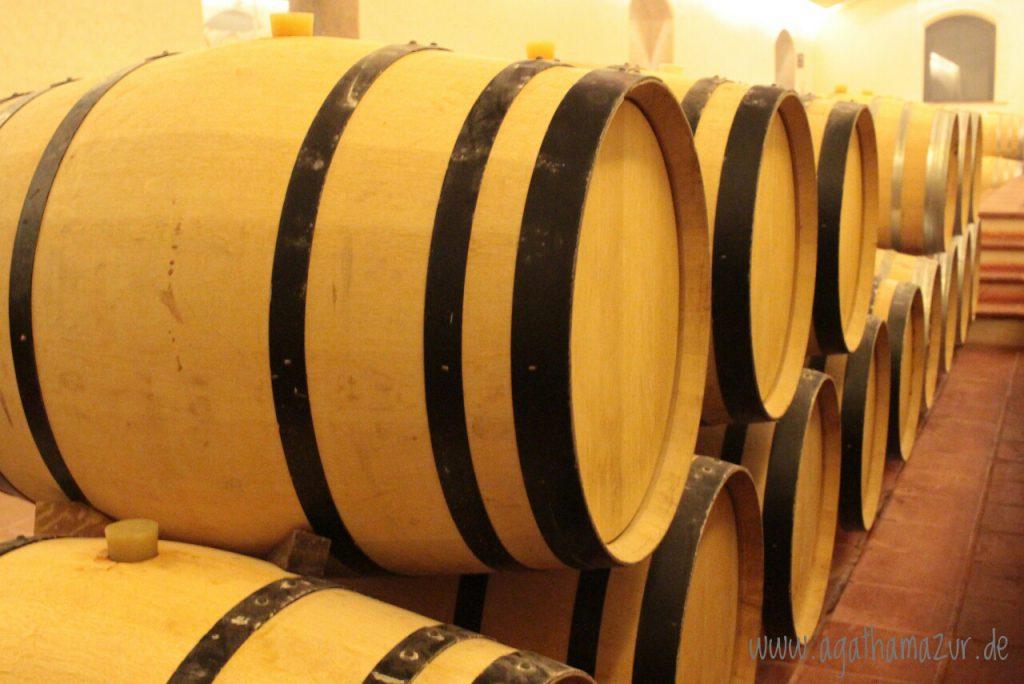 Auf dem Weingut Concha y Toro, dem größten Weinexporteur von Chile.